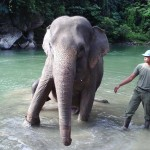 Sumatra An Awesome Backpacker Trail