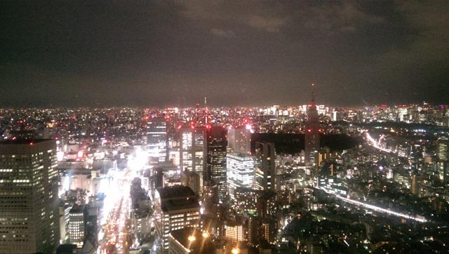 The view from New York Grill Bar Tokyo
