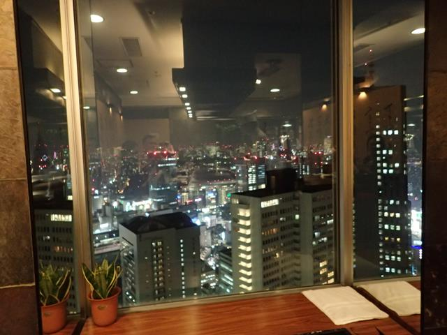 View from Misono Teppanyaki Restaurant Shinjuku