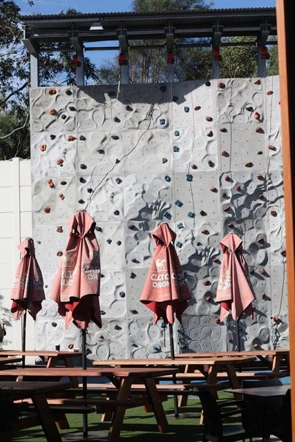 climbing-wall-at-ettamogah-pub