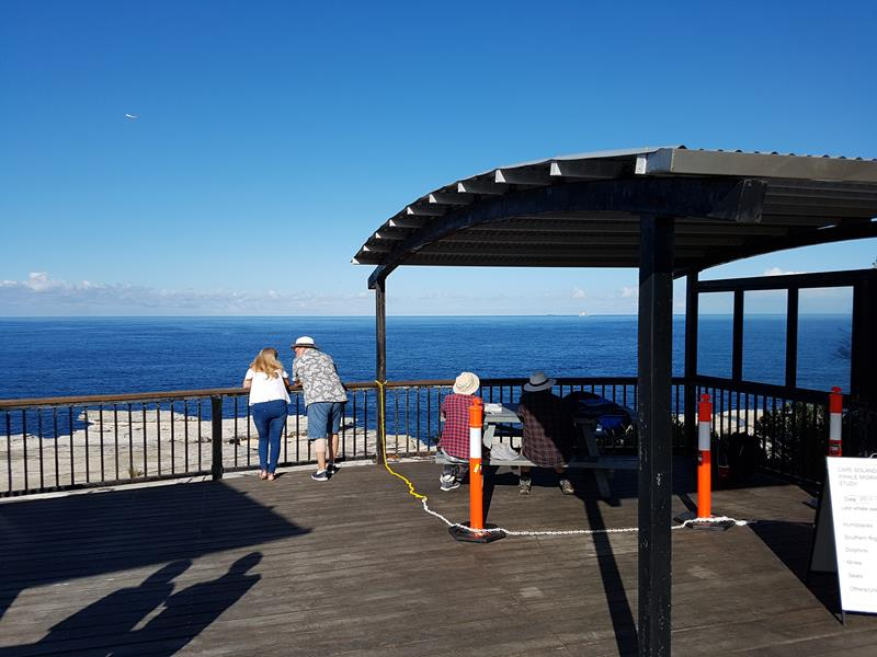 Cape Solander Observation Deck
