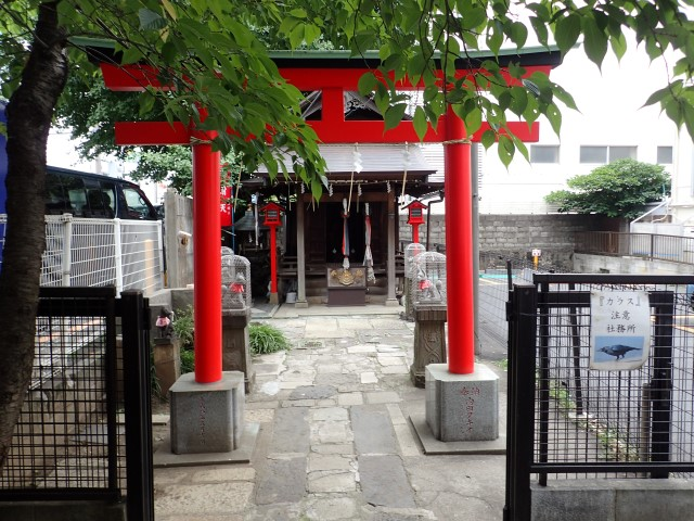 Torii gate at Raiden Inari Shrine