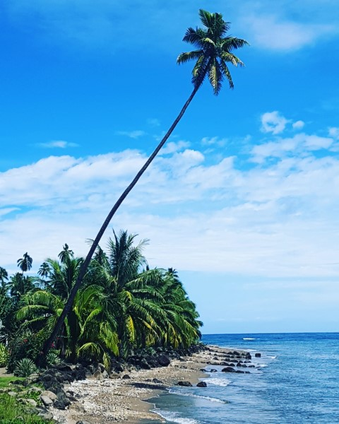 Sunny days in Fiji during the wet season