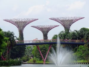 What's On In Singapore