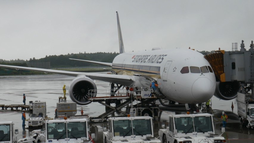 Flight Review Singapore Airlines Dreamliner B787-10