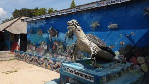Turtle Conservation and Education Centre Serangan Island Bali