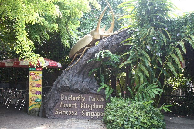 Butterfly Park and Insect Kingdom Sentosa