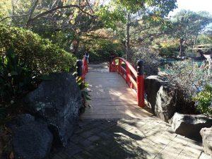 Sydney Japanese Gardens