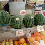 Expensive fruit in Tokyo Japan