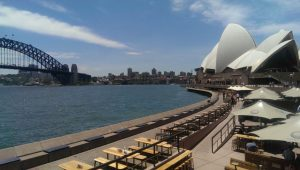 Best view of Sydney Harbour from Opera Bar